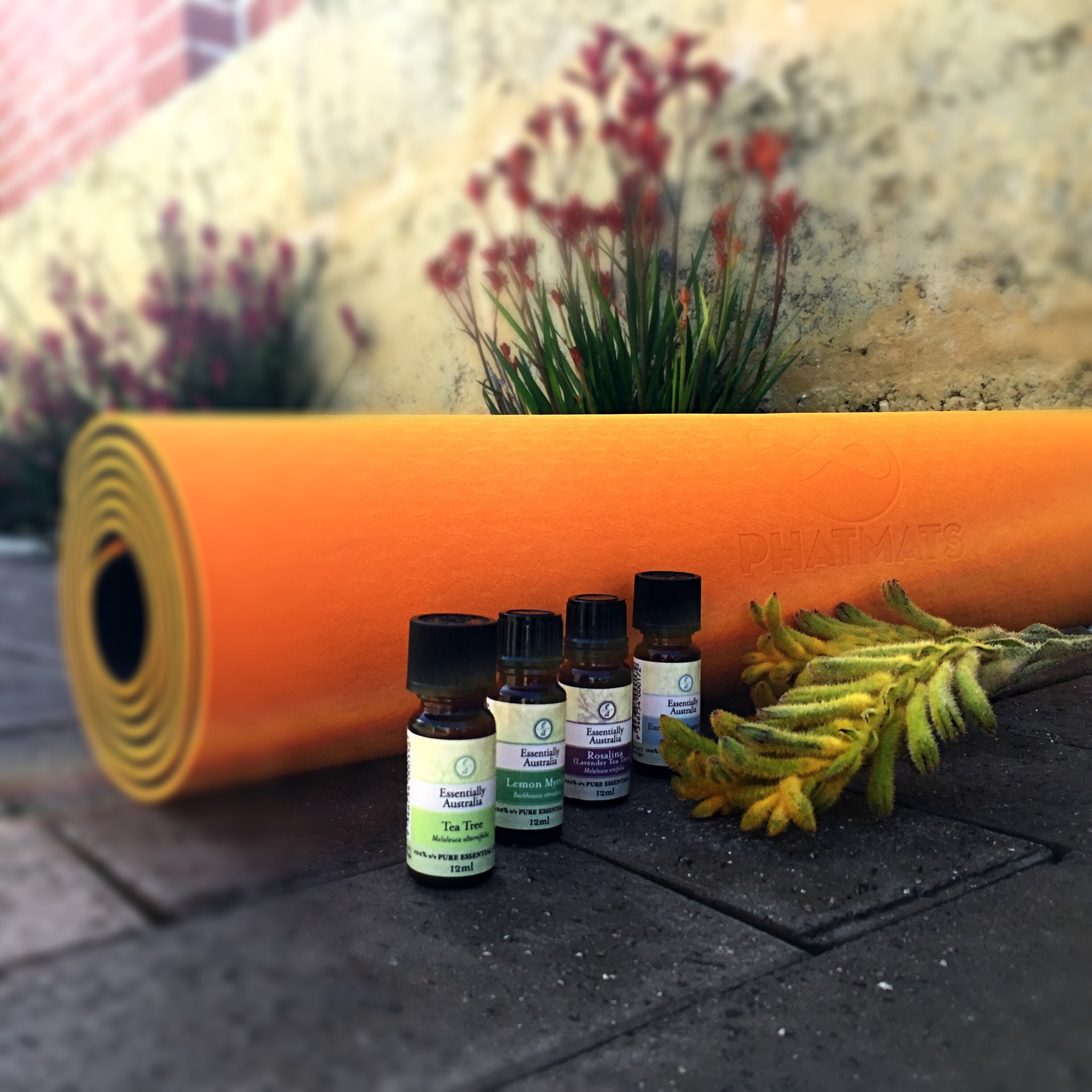 DIY Fitness Mat Cleaner